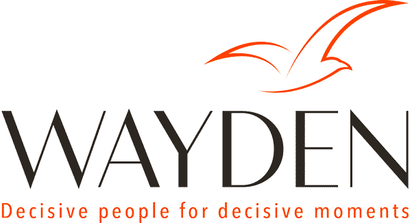 wayden - management de transition
